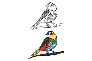 Coloring bird with doodle sample