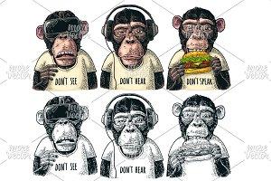 Three wise monkeys engraving