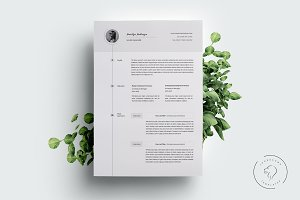 Resume and Cover Letter - 5 Pages