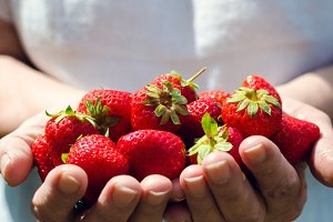 Female hands holding strawberries