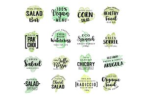 Salads vegetables vector lettering