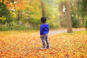 A kid is watching the leaves fall