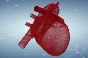 Illustration of 3d human heart