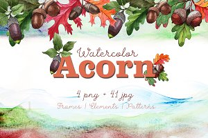Autumn acorn leaf and plant PNG set