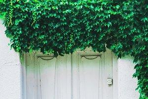 Old, White Door