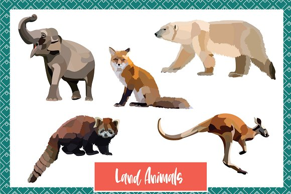 Wild World Animal Vectors in Graphics - product preview 2