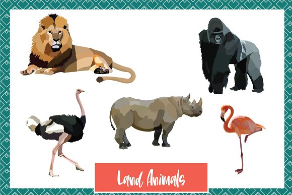 Wild World Animal Vectors in Graphics - product preview 3