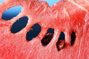 Ripe fresh watermelon large