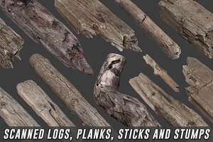 Scanned Logs, Planks, Sticks, Stumps