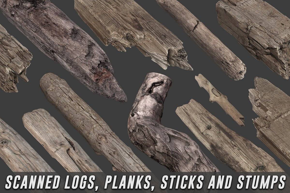 Scanned Logs, Planks, Sticks, Stumps