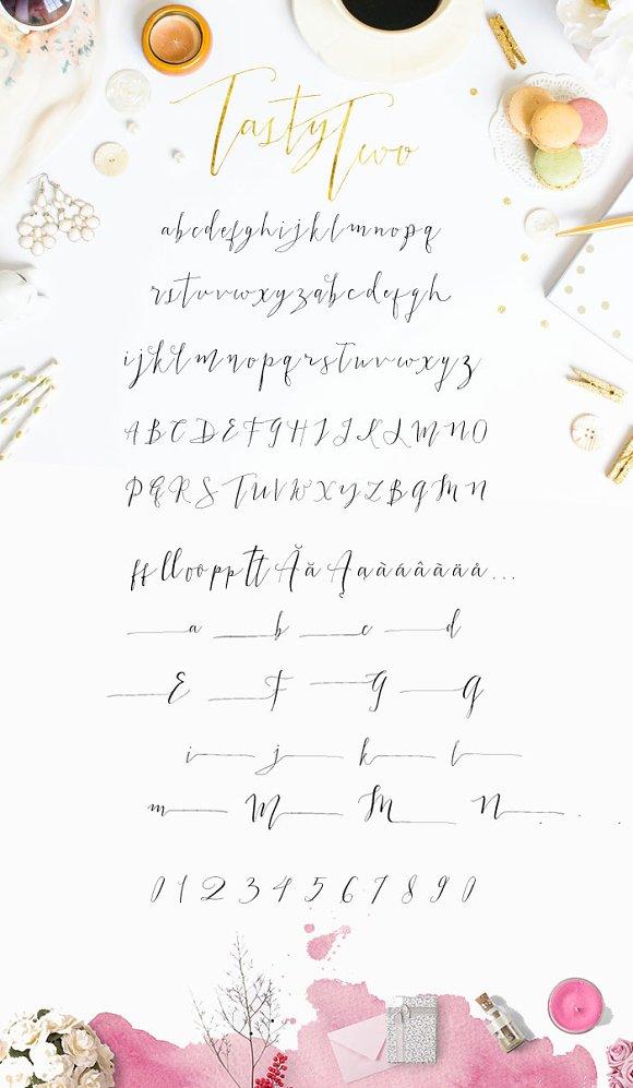 tastytwo modern script typeface script fonts creative market