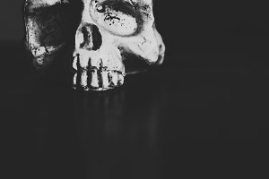 Scull On The Table