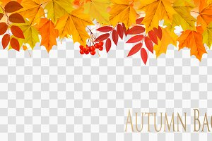 Abstract autumn panorama. Vector