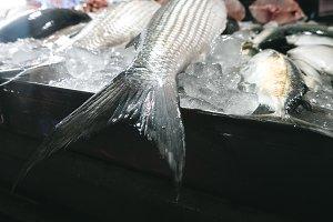 Fish tail at fish market