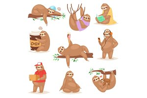 Sloth vector slothful animal