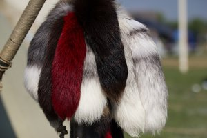 Fur products of different colors in