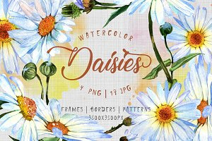 Cool watercolor daisies PNG set