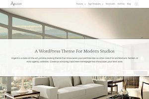 Argent - Modern WordPress Theme