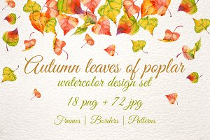Autumn leaves of poplar PNG set