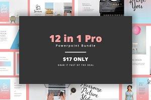 12 in 1 Pro Powerpoint Bundle