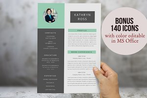 3 in 1 with 2p resume template