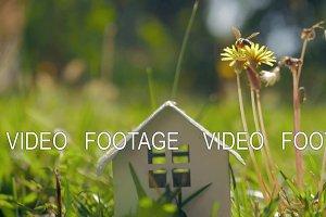 Eco home and living. Metaphor with