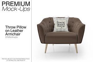 Throw Pillow on Leather Armchair Set