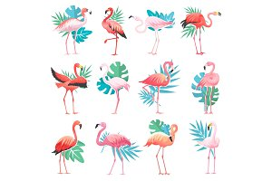 Flamingo vector tropical pink