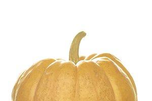 A Pumpkin on table