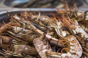 Appetizing grilled royal shrimp