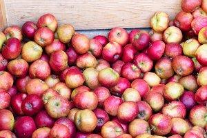apples on market