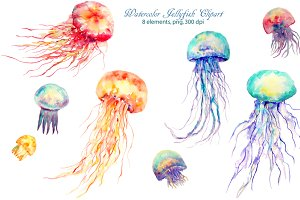 Watercolor clipart Jellyfish