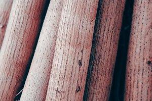 bamboo bio background minimal