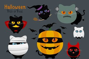 Set of halloween cats costume