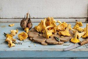 Raw uncooked Chanterelles mushrooms