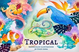 Tropical summer set