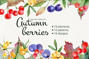 Autumn berries. Watercolor set