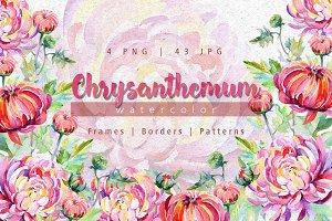Tender pink chrysanthemum PNG set