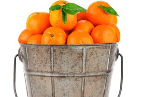 Old Metal Bucket Clementines
