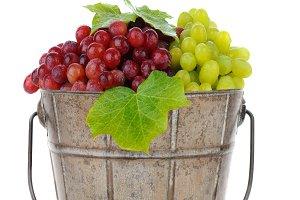 Bucket of Fresh Ripe Grapes
