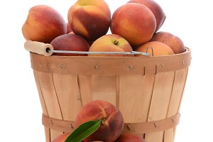 Basket of Yellow Peaches