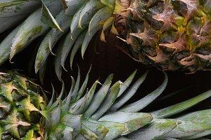 Closeup of two fresh ripe pineapples