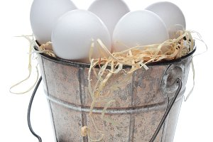 Eggs in an Old Fashioned Bucket