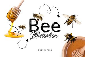 Bee Illustrations