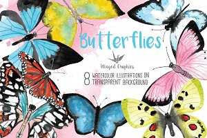 Butterfly watercolor illustrations