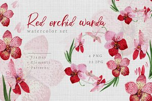 Watercolor red orchid wanda PNG set