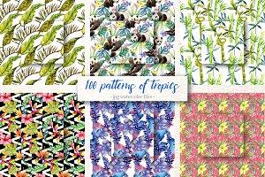 100 patterns of tropics JPG set