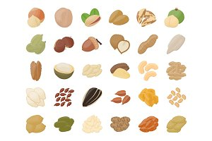55 Nuts Flat Icons