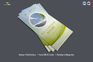 Trifold Brochure Vol. 2