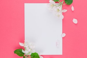 Blank frame mockup with white flower